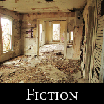 Fiction4.1